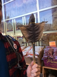 Dried Lizard on a Stick